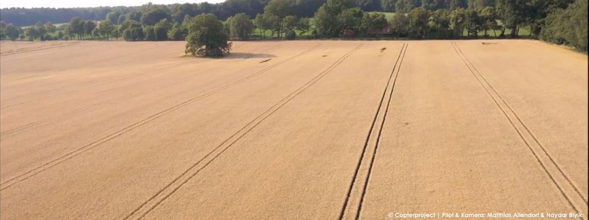 landwirtschaft_luftbild