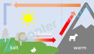 Talwind